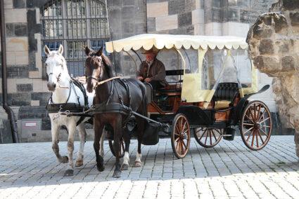 Eine überdachte Kutsche mit Pferden fährt durch Dresden
