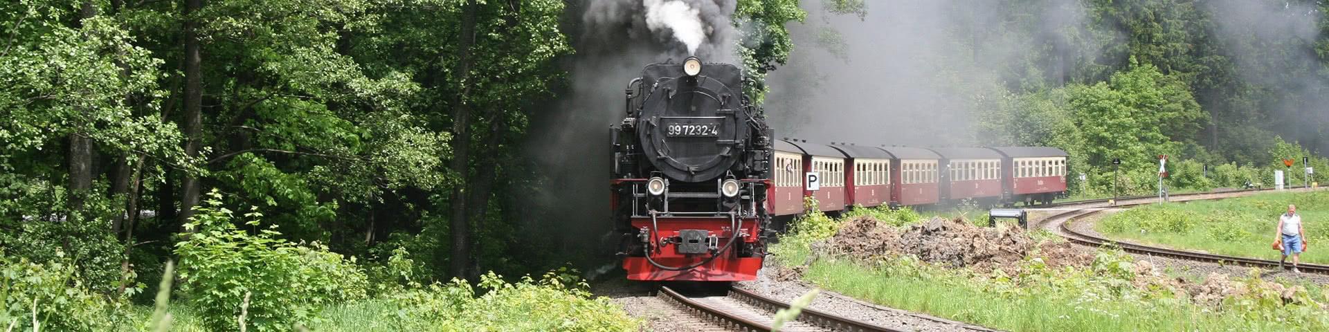 Schmalspurbahn in Wernigerode